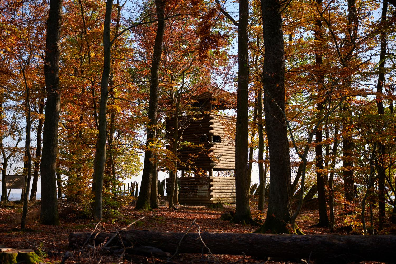 Herbst_Eppinger_Linien_Weg_Eppingen_oetisheim_©Naturpark_Stromberg-Heuchelberg_e_V__Christian_Ernst105_klein.jpg
